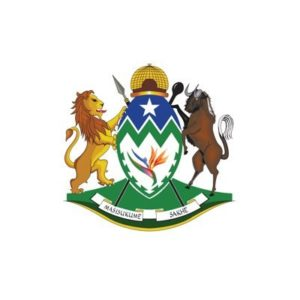 KZN Dept of Arts and Culture